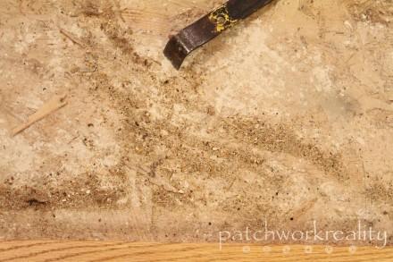 Carpet dust?