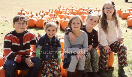 Patchwork pumpkin patch