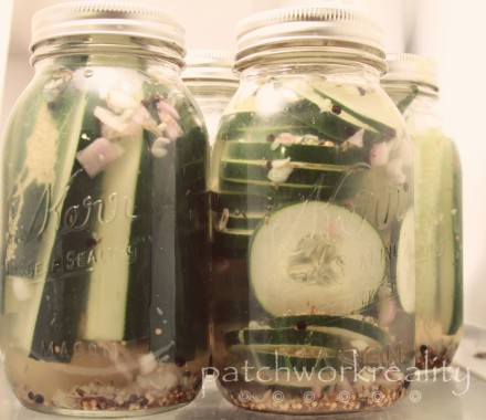 Patchworkreality Pickles
